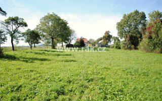 foto Pozemek, 2 169 m2, ke stavbě RD, Miskovice – PŘÍTOKY, okr. Kutná Hora