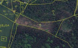 foto lesní pozemek 9 776 m2 k.ú. Chlistov, okr. Klatovy